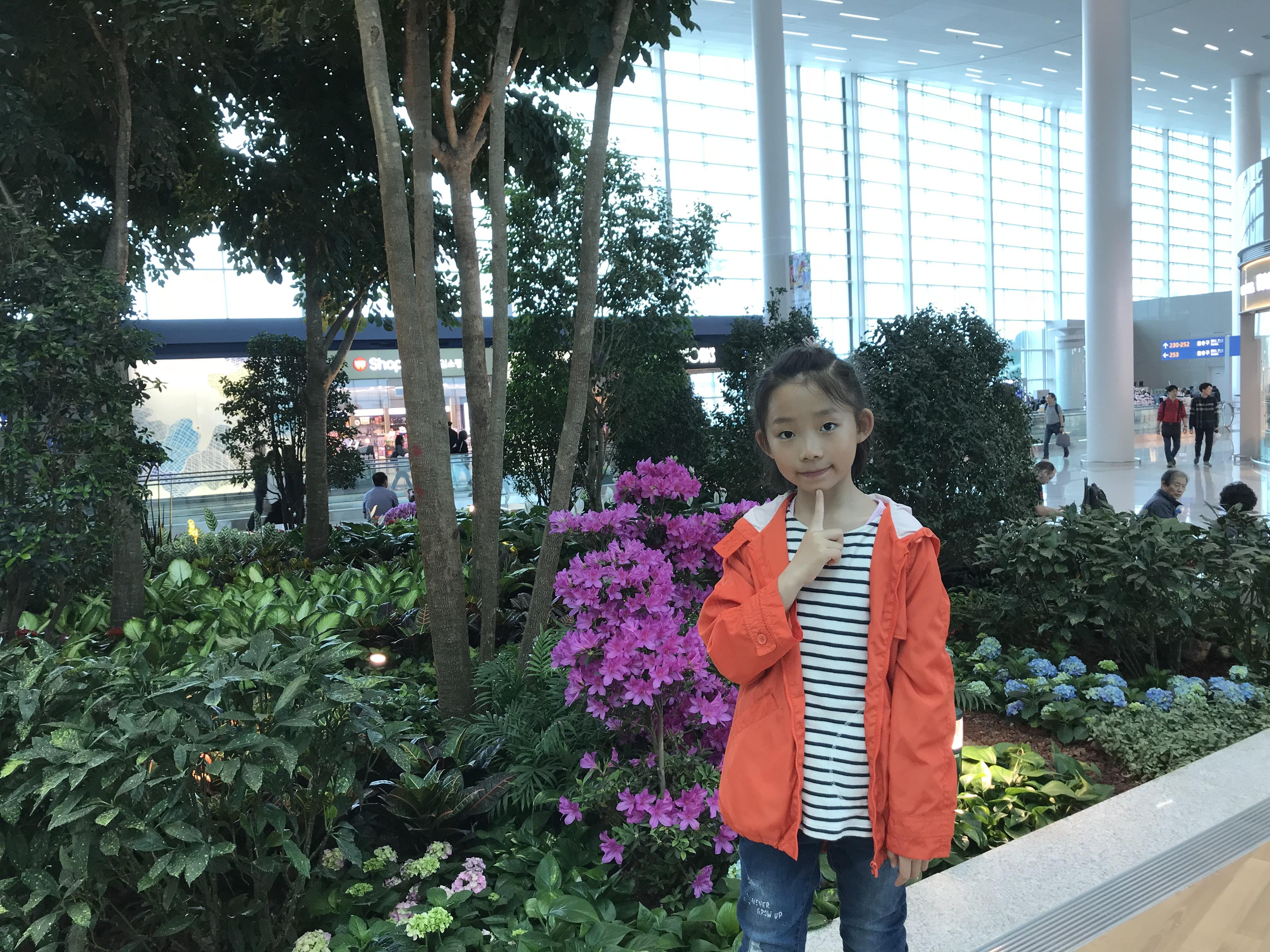 在首尔仁川机场转机1