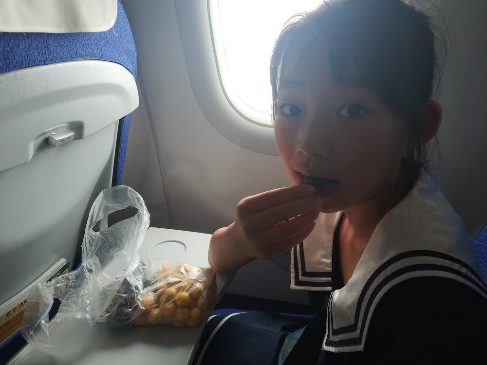 在飞往西安的飞机上
