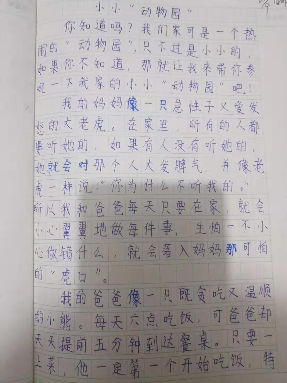 """小小""""动物园""""-part1"""