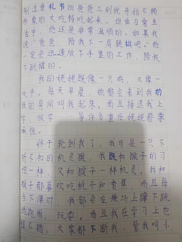 """小小""""动物园""""-part2"""